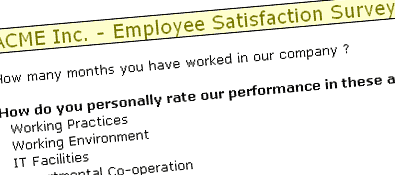Employee Satisfaction Surveys using MS Excel