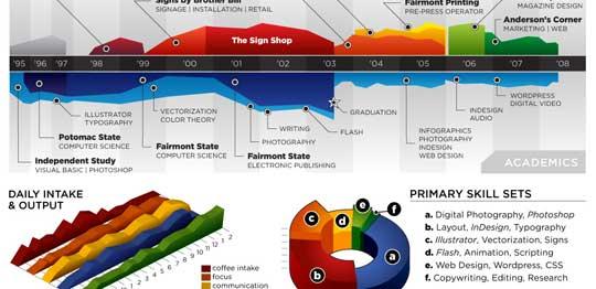 professional resume or data visualization fail   poll